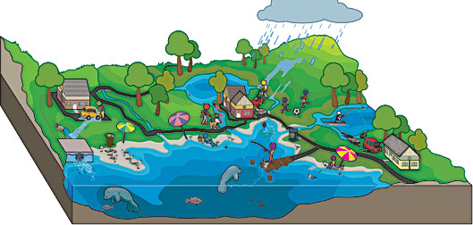 importance of water pollution