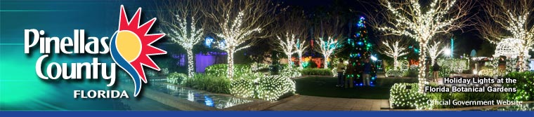 Holiday Lighs at the Florida Botanical Gardens