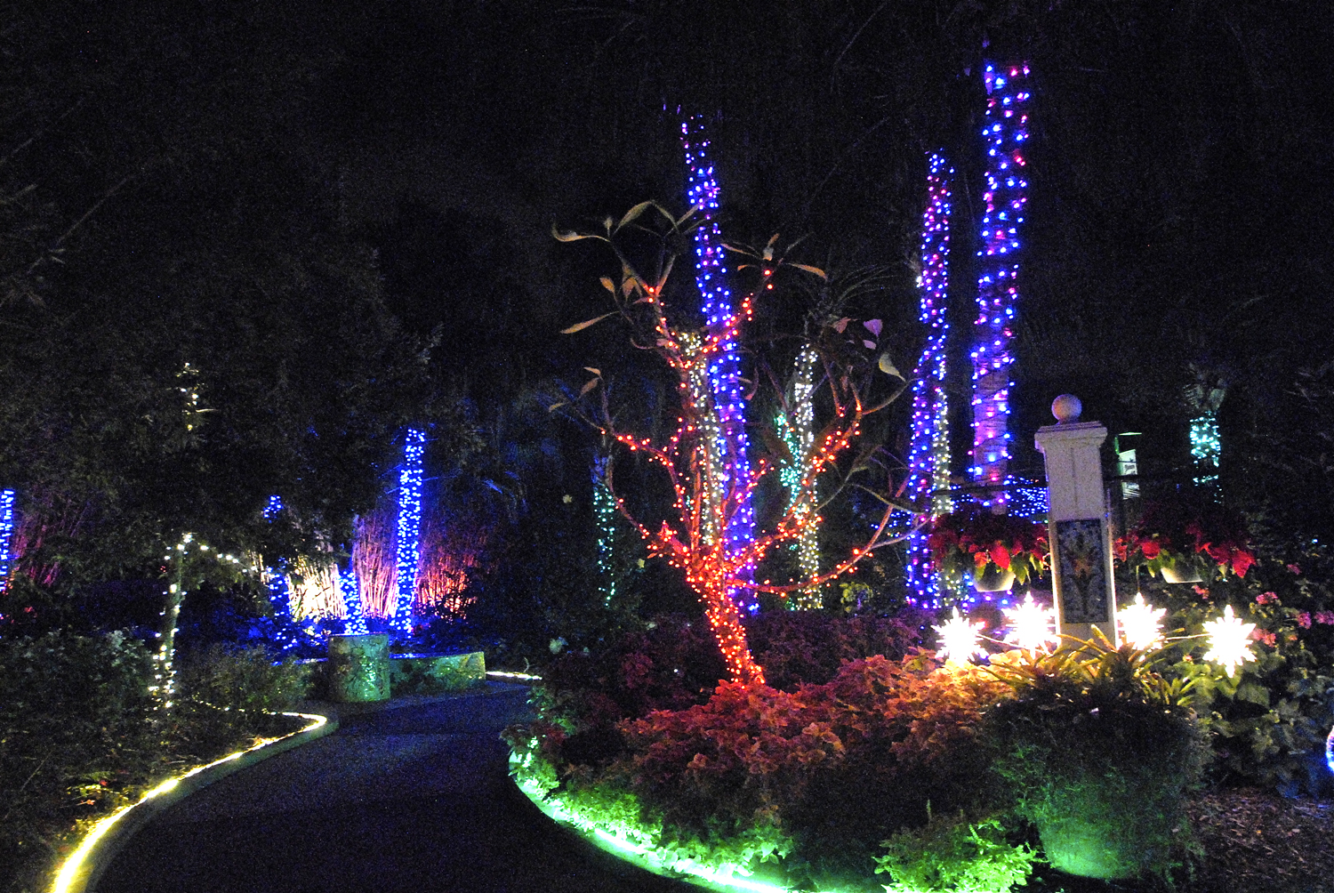 Holiday Garden Lights