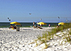 Pinellas Beaches