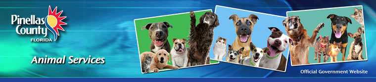 Pinellas County, Florida - Animal Services Home Page