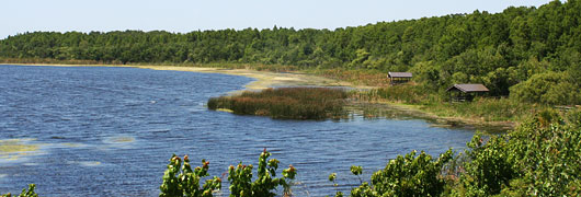Pinellas county florida news watershed planning lake for Lake tarpon fishing