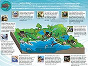 Pinellas County Florida News Watershed Management